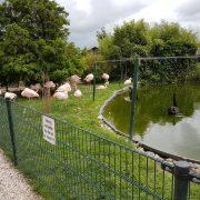 Stichting Van Blanckendaell Park